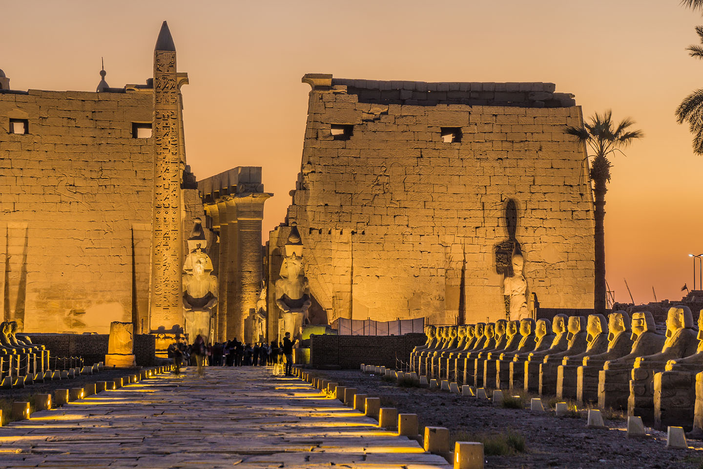 Valley Of The Kings Tour Price
